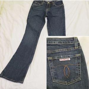 Hudson Dark Wash Bootcut Flare Denim Jeans Size 26